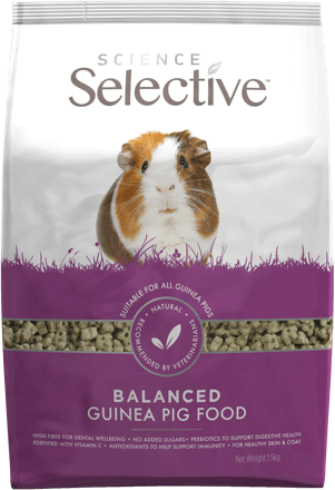 ss-guinea-pig-food-front
